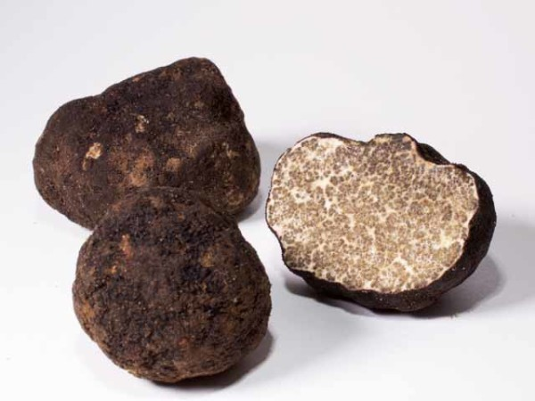 Oregon Black Truffles