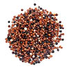 Red And Black Quinoa