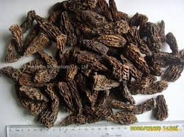 Morels, Baby Dried