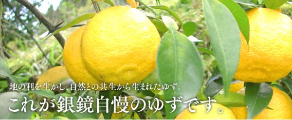Yuzu Mitsu Juice