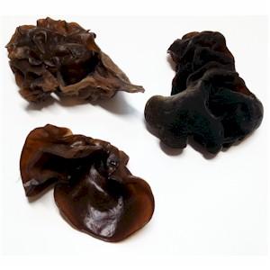 Woodear Mushrooms