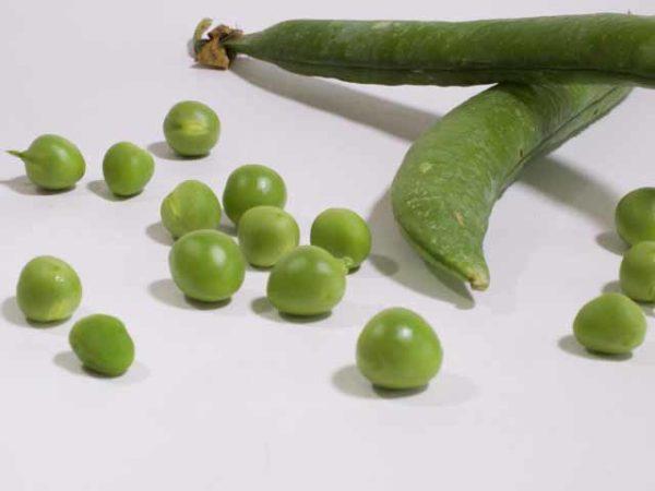 English Peas, Fresh