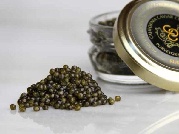 Caviar, Russian Osetra – Golden Farmed
