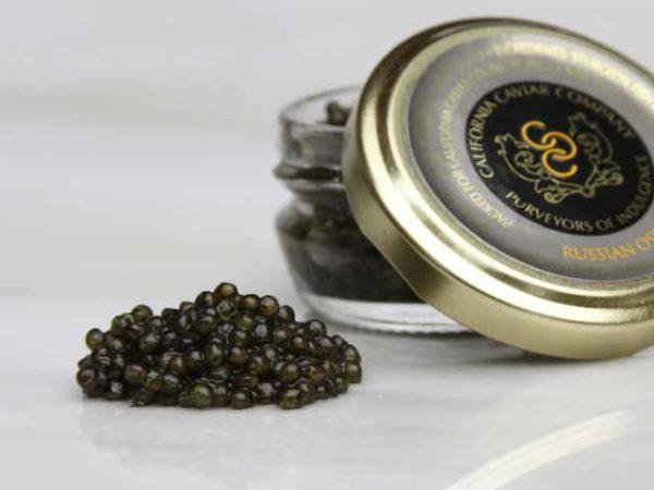 Caviar, Russian Osetra – Royal Farmed