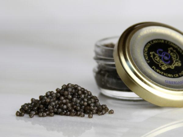 Caviar, Siberian Sturgeon – Imported Farmed