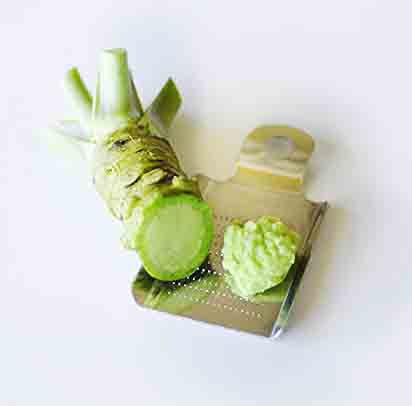 Fresh Wasabi Root (Rhizome)