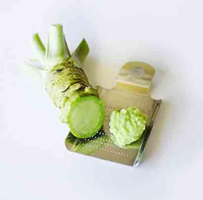 Fresh Wasabi Root (Rhizome)