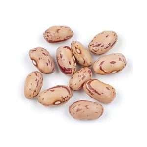 Beans, Dried